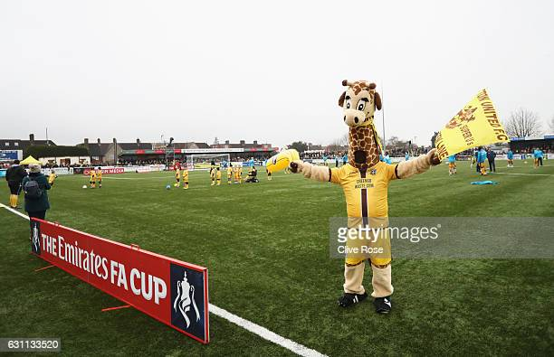 The Sutton United mascott Jenny the Giraffe entertains supporters during The Emirates FA Cup Third Round match between Sutton United and AFC...