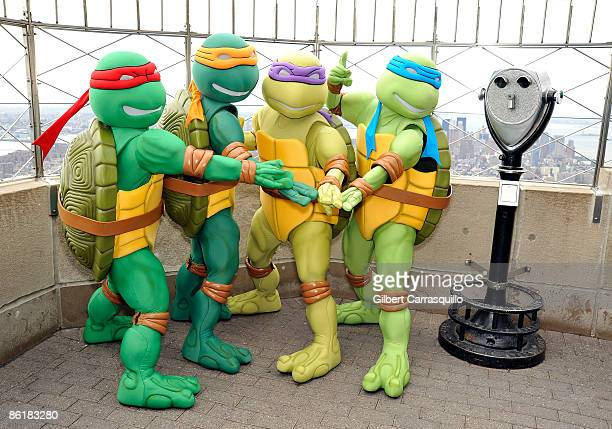 Donatello tortue ninja photos et images de collection - Michaelangelo tortue ninja ...