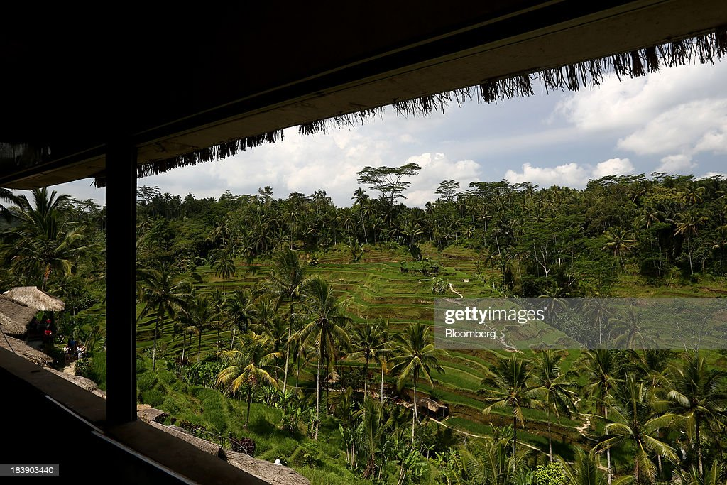 The Tegallalang rice terraces are seen in Ubud, Bali, Indonesia, on Tuesday, Oct. 8, 2013. Bank Indonesia said it will regulate currency hedging by individuals and companies, including state-owned firms, to help stabilize Asias most-volatile currency. Photographer: SeongJoon Cho/Bloomberg via Getty Images