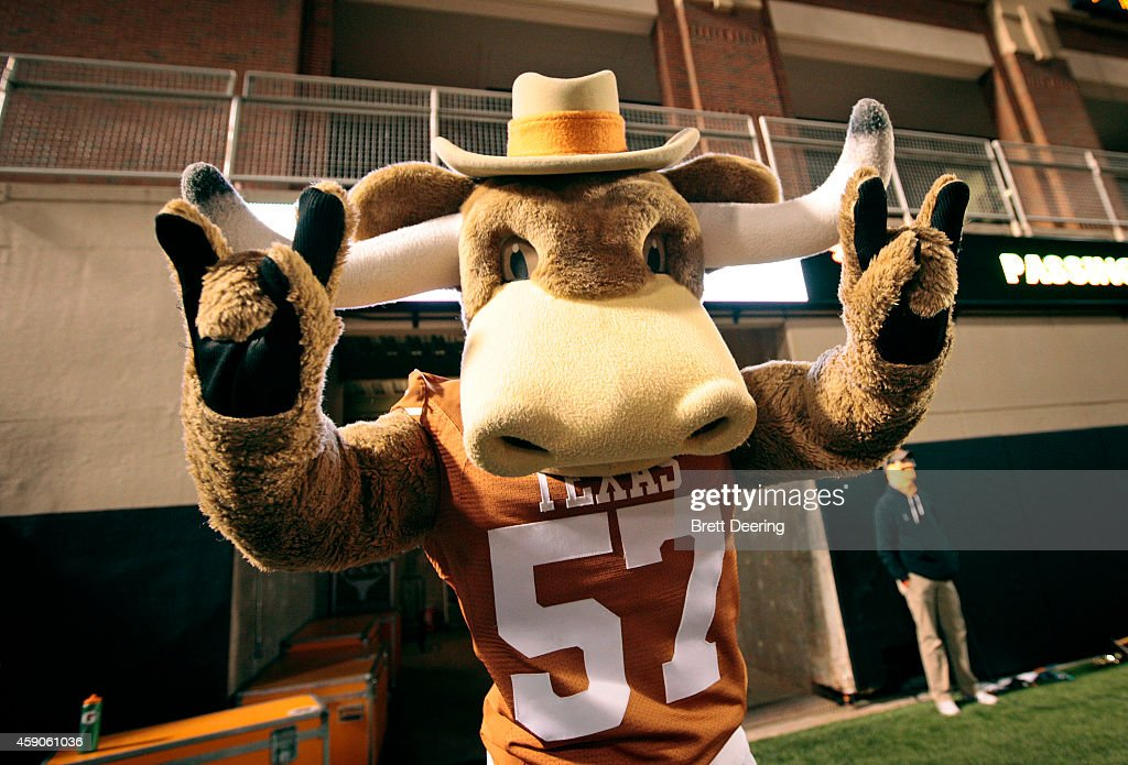 The Texas Longhorns mascot Bevo performs during the game against the Oklahoma State Cowboys November 15 2014 at Boone Pickens Stadium in Stillwater...