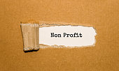 The text Non Profit appearing behind torn brown paper