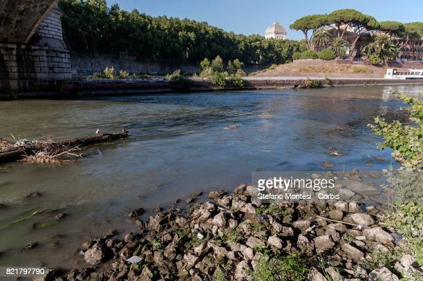The Tiber River under the Garibaldi Bridge with the low water level due to the drought on July 24 2017 in Rome Italy Because of the drought the ACEA...