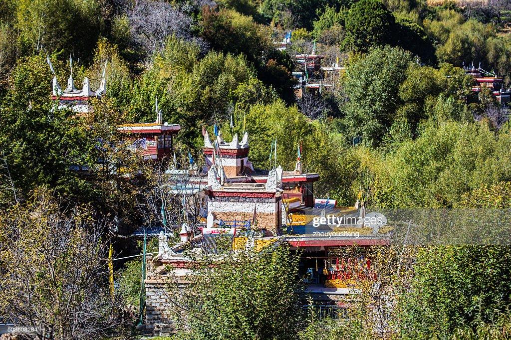 The Tibetan folk houses in Sichuan : Stock Photo