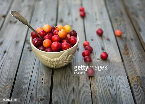 The tiny plums : Stock Photo