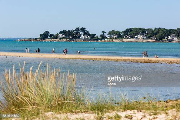 The tombolo leading to the ''ile de Stuhan' island on the 'Men Du' beach in Lla Trinite sur Mer sandbank at low tide