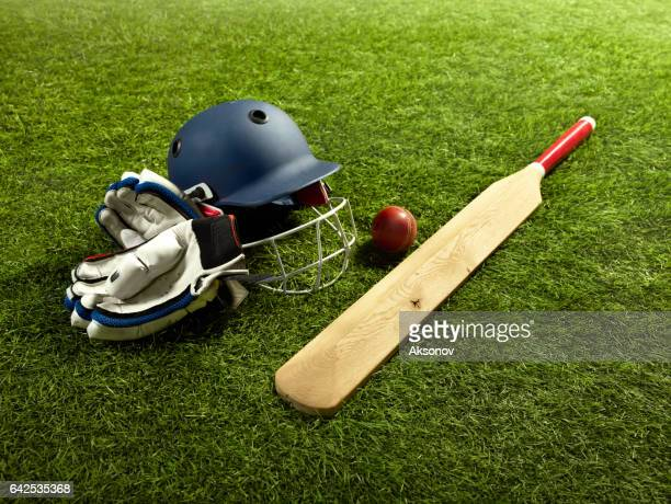 The tools for a cricket