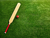 The unbranded tools for a cricket player