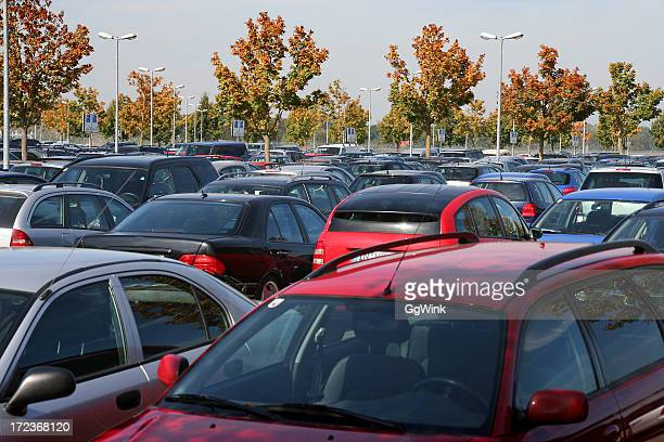 The tops of many rows of cars in a parking lot with trees