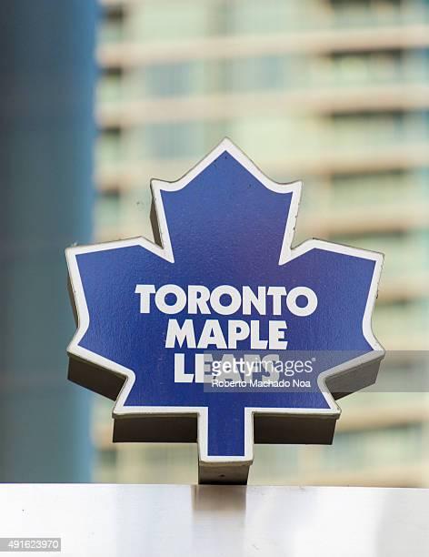 The Toronto Maple Leafs is a professional ice hockey team based in TorontoEmblem of ice hockey team