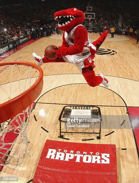 The Toronto Raptor mascot flies thru the air towards the net at the Air Canada Centre November 26 2006 in Toronto Canada The Toronto Raptors beat the...