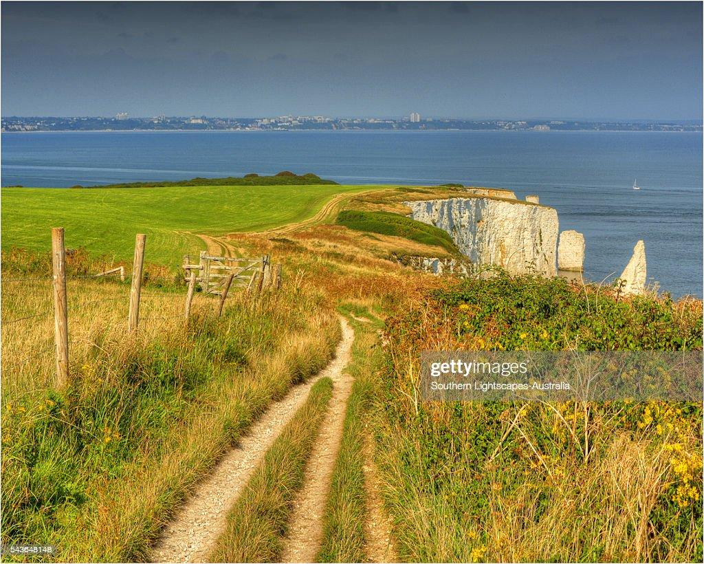 The track along the coastline towards Old Harry Rocks, Dorset, England, United Kingdom.