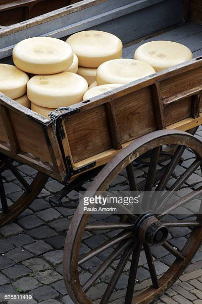 The traditional cheese market in Gouda