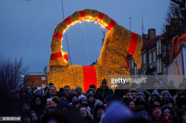 The traditional christmas goat made of straw is inaugurated in Gavle Sweden on November 27 2016 To protect the goat this year which is often the...
