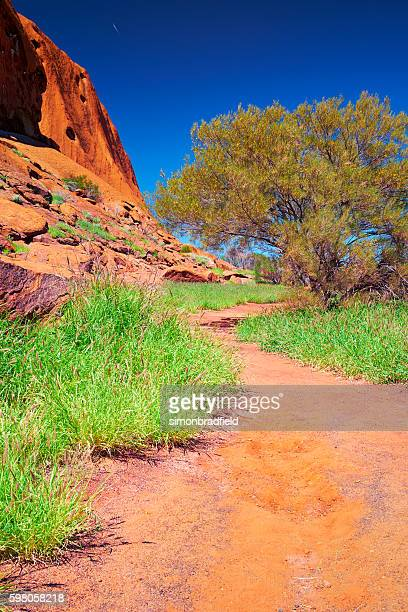 The Trail Around Uluru