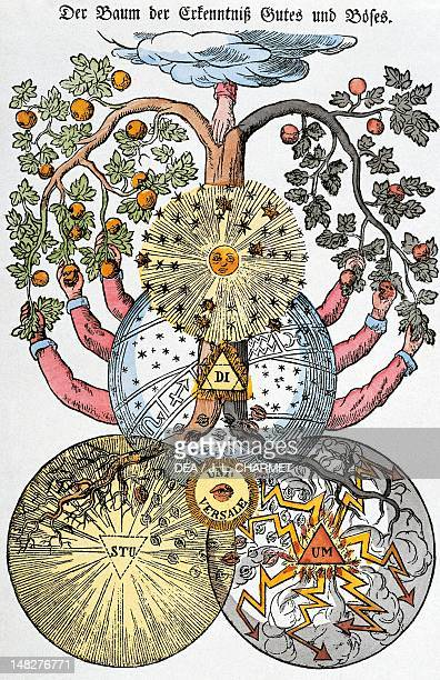 The tree of knowledge of good and evil taken from Figure segrete dei Rosacroce 1785 Paris Bibliothèque Nationale De France