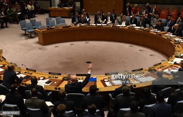 The UN Security Council votes to extend investigations into who is responsible for chemical weapons attacks in Syria at the United Nations on October...