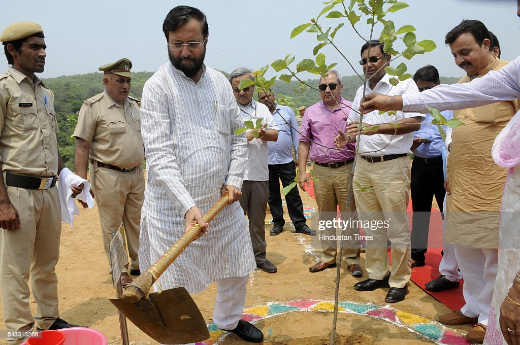 The Union minister for environment, forest and climate Prakash Javadekar planting tree beside newly constructed rain water harvesting dam at Jhirka on June 27, 2016 in Gurgaon, India. Prakash Javadekar conducted an aerial survey of the forest cover in Gurgaon and Mewat districts of Haryana, with a view to understand the Aravallis range. The minister said that a new policy will be framed to protect ecologically sensitive Aravallis taking into accounts all the previous judgments related to the issue.