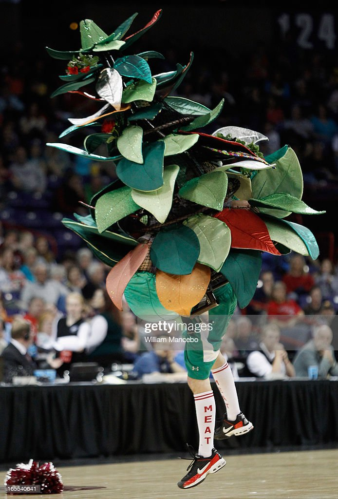 The unofficial tree mascot for the Stanford Cardinal performs at the game against the Georgia Lady Bulldogs during the NCAA Division I Women's Basketball Regional Championship at Spokane Arena on March 30, 2013 in Spokane, Washington. The Lady Bulldogs defeated the Cardinal 61-59.