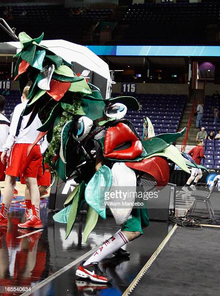 The unofficial tree mascot for the Stanford Cardinal performs prior to the game against the Georgia Lady Bulldogs during the NCAA Division I Women's...