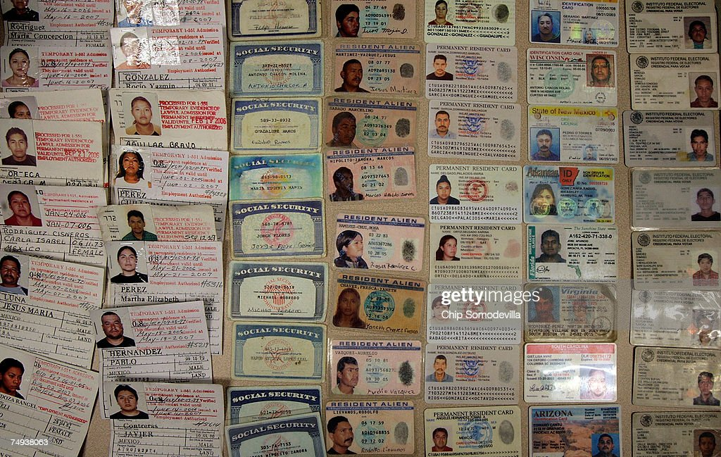 The US Border Patrol displays false identification cards including fake Social Secruity cards and drivers licences that they have confiscated over...