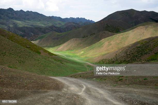 The valley of Dungenee canyon at Ömnögovi province Mongolia