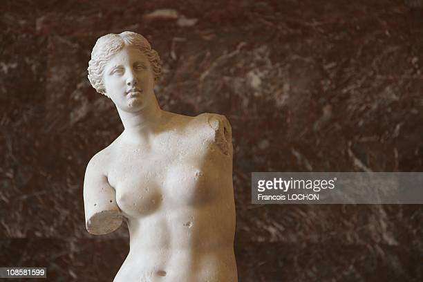 The Venus de Milo at the Louvre Museum back after restoration on July 9 2009