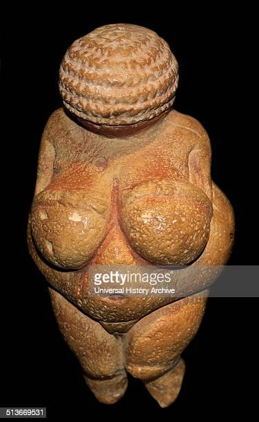 The Venus of Willendorf one of the early female figurines Small female figurines are found across Europe from France to Russia about 2800020000 years...