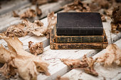 The very old books