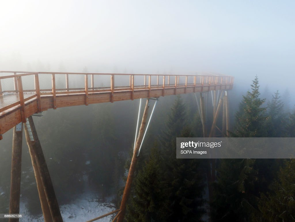 The viewing deck seen being covered by morning mist. In Tatra mountains in Slovakia, in Bachledova valley, a treetop walk was opened in September 29th 2017. The trail is 1234 meters long and was build 24 meters over the terrain. There is also observation tower 32 meters high. The trail was build from wood by German construction company. You can see Tatra mountains and Pieniny mountains from there. There are just few places where you can experience walk in the top of trees in Europe. It´s not just simple trial. It is also educational path. In first two months, more than 60 000 visitors walked in top of trees there.