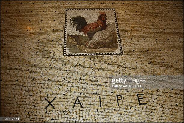 The Villa Kerylos An Hymn To Ancient Greece On March 1 2004 In BeaulieuSurMer France LEmblema´ An AlexandrineStyled Mosaic Dating Back To The Second...