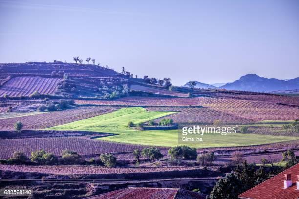 The village of Briones and fields. La Rioja, Spain