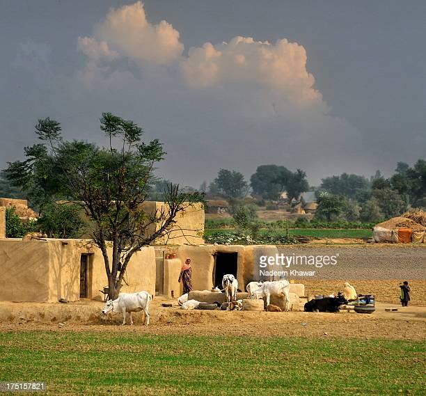 The Village of Punjab