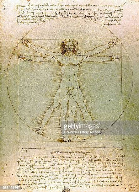 The Vitruvian Man By Leonardo da Vinci Dated 15th Century