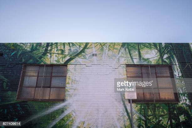 The wall mural by artist Dan Wenn is seen on the exterior of the Batch Brewery in Marrickville on August 7 2017 in Sydney Australia Perfect Match is...