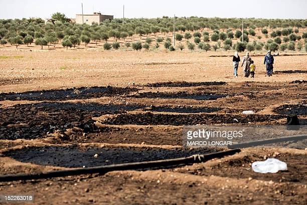 The waste of pressed olives mixed with water is left to dry under the sun in a field near the battled Syrian city of alBab on September 16 2012...