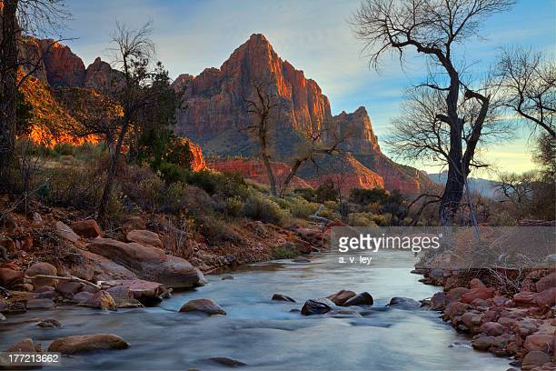 The Watchman of Zion National Park