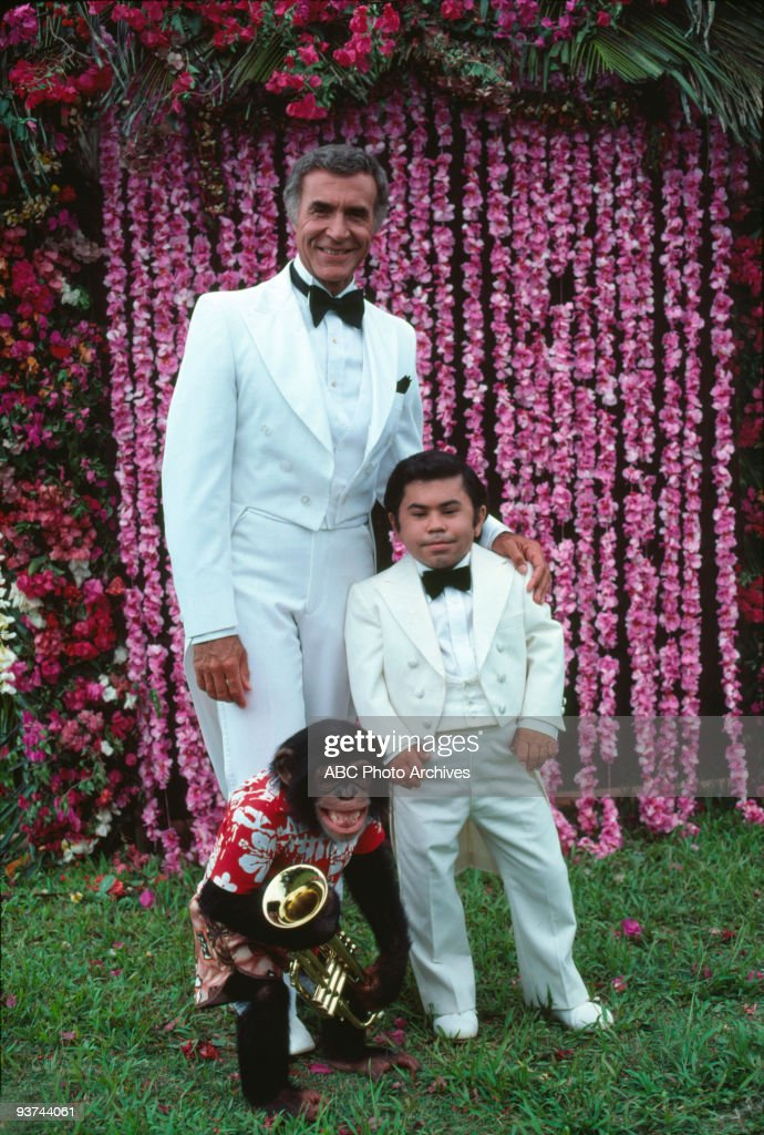 Fantasy island roarke wedding