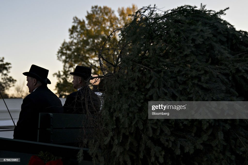 First Lady Melania Trump Participates In The White House Christmas Tree Presentation