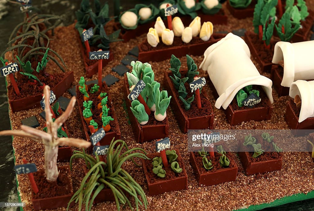 The White House kitchen garden, part of the nearly 300-pound White House gingerbread house, is on display at the State Dining Room during a preview of the 2012 White House holiday decorations November 28, 2012 at the White House in Washington, DC. First lady Michelle Obama welcomed military families, including Gold Star and Blue Star parents, spouses and children, to the White House for the first viewing of the 2012 holiday decorations. The theme for the White House Christmas 2012 is 'Joy to All.'