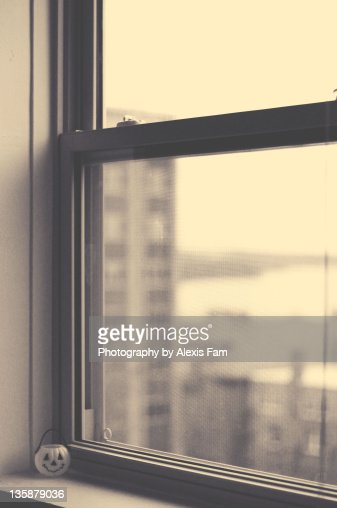 The Window : Stock Photo