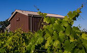 The winery barn at Inman Family Wines located at the corner of Olivet Lane and Piner Road is viewed on June 4 near Santa Rosa California Despite a...