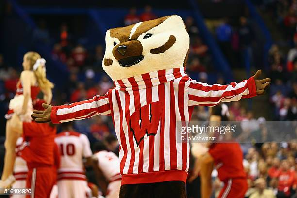 Wisconsin Badger Mascot Stock Photos and Pictures | Getty ...