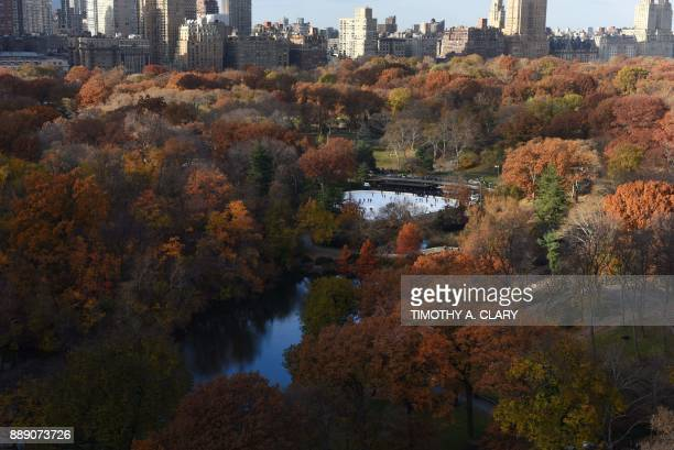 The Wollman ice skating rink sits among trees changing colors in New York's Central Park on November 28 in a view from above 5th Avenue with Central...