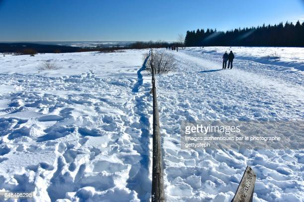 The wooden fence separating pedestrian area and wildlife nature in winter