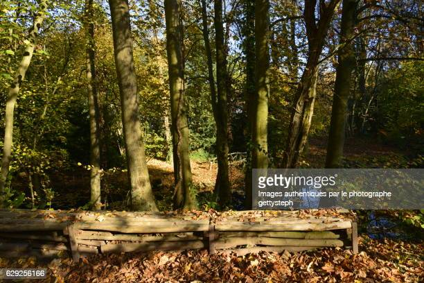 The wooden small wall in front of small pond in autumn