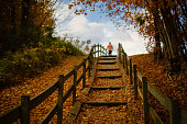 The wooden stairs on the pedestrian path in the colorful autumn mountain's forests near by of the Metcalf Overlook, Unicoi County, Tennessee, USA