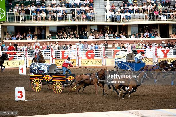 The world famous Chuckwagon Races get underway at the Stampede Park Racetrack in this 2008 Calgary Canada summer festival photo The annual world...