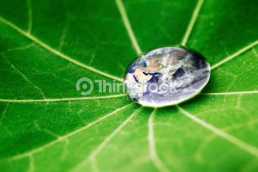 The world in a drop of water : Stock Photo