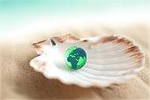 Sea shell on sand with earth globe inside