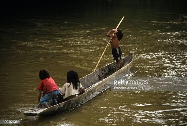 The world of Jivaro Indians in Ecuador in 1994 Jivaro Indian Children playing on the Rio Conambo Achuar ethnic group Ecuadorian Amazon